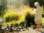 seniorenumzuege